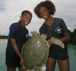 Student interns from Cape Eleuthera Institute. Photo: Stephen Connett