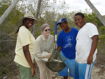 Karen Bjorndal training volunteers in The Bahamas Photo: Alan Bolten