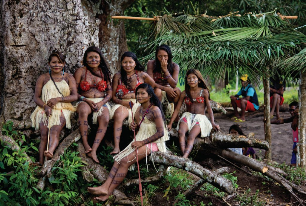 endangered amazon an indigenous tribe fights back against
