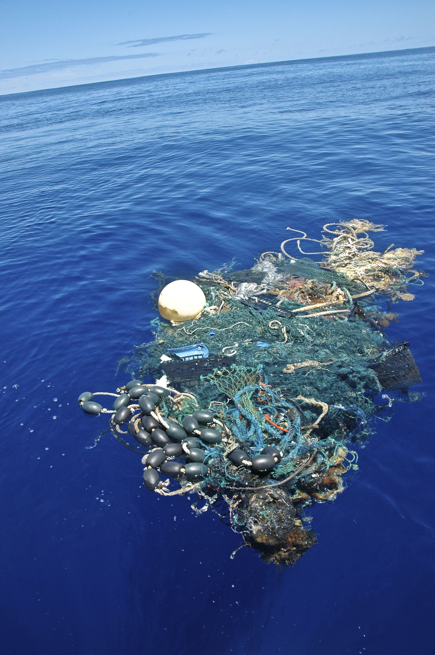 a clump of floating debris in the ocean