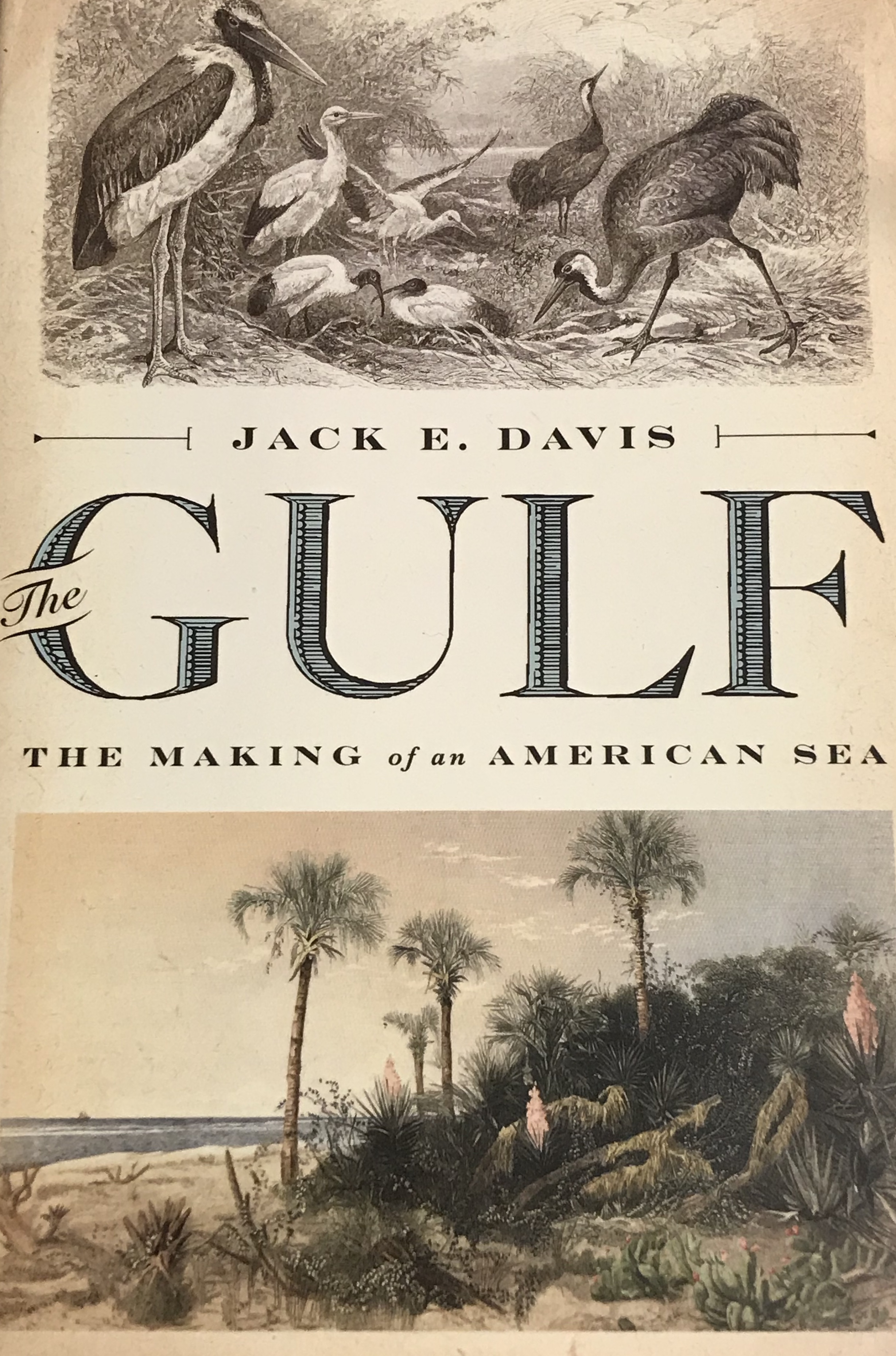 book cover for The Gulf