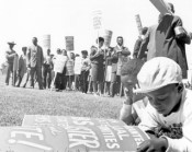 Young boy with poster at a protest